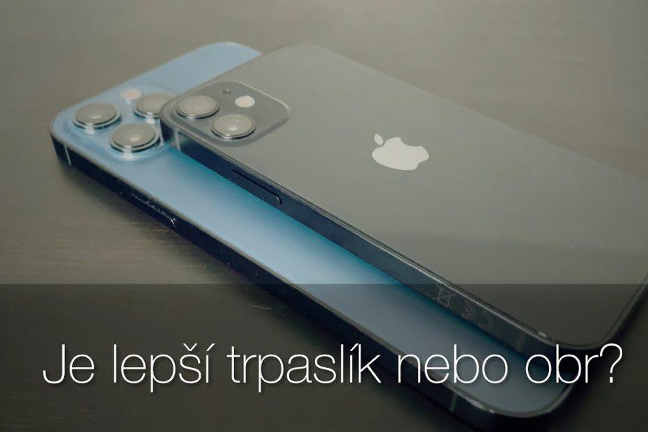 iPhone 12 mini vs 12 Pro Max